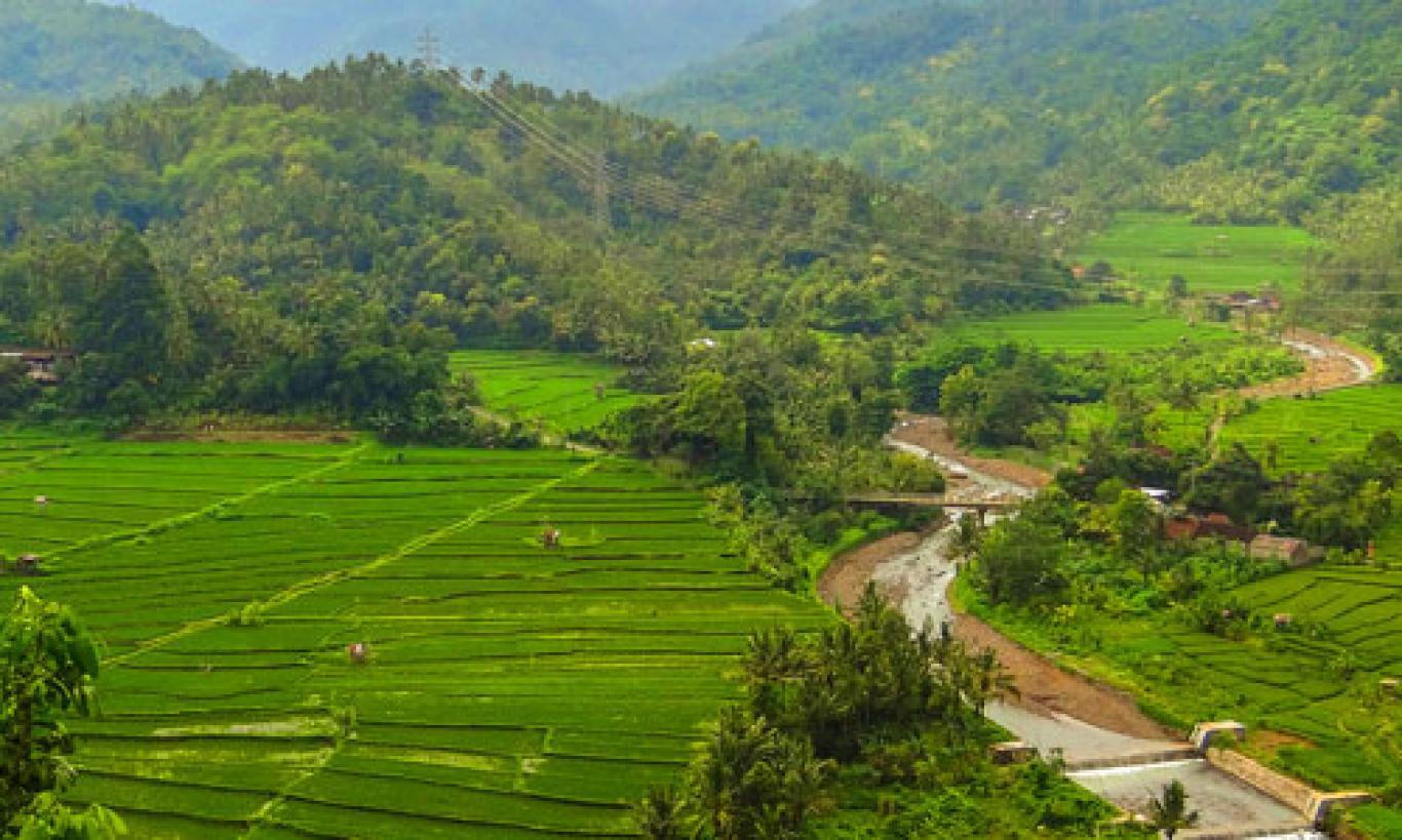Daya Tarik Obyek Wisata Teracce Rice Kekeran Busungbiu